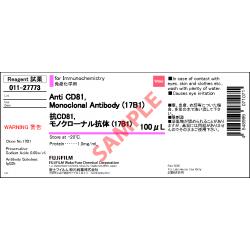 Anti CD81, Monoclonal Antibody (17B1) - Fujifilm WAKO