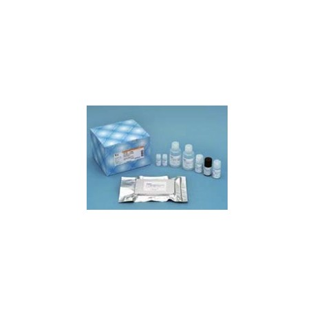 Human/Rat Beta Amyloid (42) Elisa Kit Fujifilm WAKO