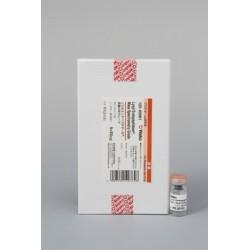 Lysyl Endopeptidase®, Mass Spectrometry Grade (Lys-C) - Fujifilm WAKO