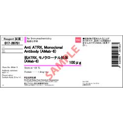 Anti-ATRX Monoclonal Antibody (AMab-6) - Fujifilm WAKO