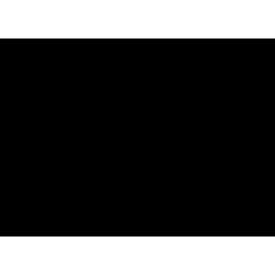 Gentamicin Sulfate - Fujifilm WAKO