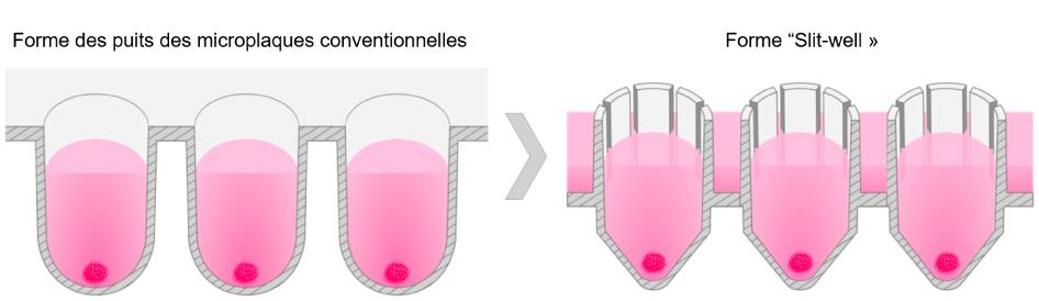 forme des puits des microplaques conventionnelles